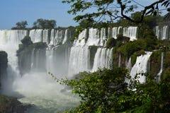美丽的伊瓜苏瀑布在阿根廷南美洲 库存照片