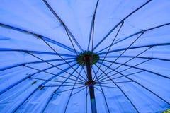 美丽的伞 免版税库存图片