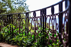 美丽的伪造的金属篱芭在公园 免版税库存图片