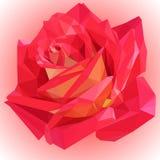 美丽的低多玫瑰 向量例证