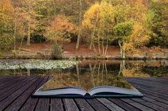 美丽的充满活力的秋天森林地reflecions在镇静湖浇灌 图库摄影