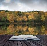美丽的充满活力的秋天森林地reflecions在镇静湖浇灌 库存图片