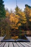 美丽的充满活力的秋天森林地reflecions在镇静湖浇灌 免版税库存照片