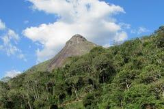美丽的光滑的岩石在密林,巴西 免版税库存照片