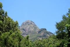 美丽的光滑的岩石在密林,巴西 库存照片