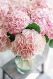 美丽的八仙花属在桌上的一个花瓶开花 浅粉红色的花花束  家的装饰 墙纸和 免版税图库摄影
