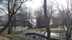 美丽的公园在城市 库存照片