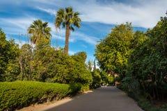 美丽的公园在马拉喀什,摩洛哥- El牡鹿老麦地那  免版税库存照片
