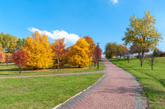 美丽的公园胡同在秋天 库存图片