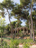 美丽的公园Guell 免版税库存图片