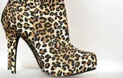 美丽的典雅的脚跟高夫人鞋子 库存照片