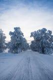 美丽的冬天路 免版税库存照片