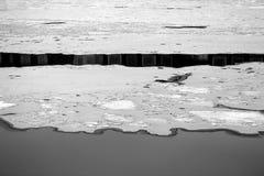 美丽的冰和水照片  免版税库存照片