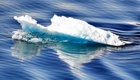 美丽的冰川冰 库存照片