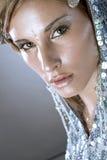 美丽的冷的冬天妇女 免版税图库摄影