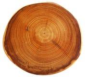 美丽的剪切结构树 库存照片