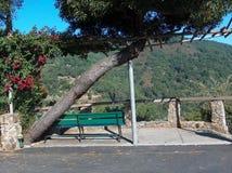 美丽的加利福尼亚 免版税库存图片