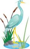 美丽的动画片苍鹭 库存照片