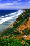 美丽的南加州海岸在春天 库存图片