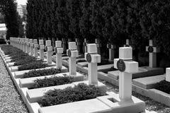 美丽的古老公墓在利沃夫州 Lychakiv公墓 免版税库存照片