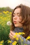 美丽的吹的蒲公英植入妇女 免版税库存图片