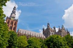 美丽的哥特式样式大教堂在登博斯,荷兰 免版税库存照片