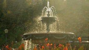 美丽的喷泉在城市公园,巴洛克式的建筑学维也纳太阳 股票录像