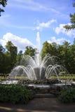美丽的喷泉, Peterhof 免版税图库摄影