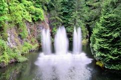美丽的喷泉 免版税图库摄影