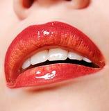 美丽的嘴唇 免版税库存照片