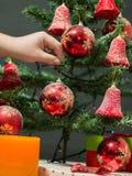 美丽的圣诞树 库存图片