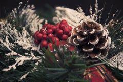 美丽的圣诞节装饰:一棵圣诞树的锥体和分支在雪下的 库存图片