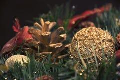 美丽的圣诞节装饰:圣诞树的锥体和分支 免版税库存照片