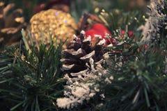 美丽的圣诞节装饰:圣诞树的锥体和分支 免版税库存图片