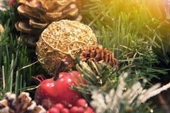 美丽的圣诞节装饰:圣诞树的锥体和分支 库存照片
