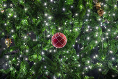 美丽的圣诞节装饰结构树 免版税库存照片