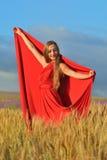 美丽的域麦子妇女 库存照片