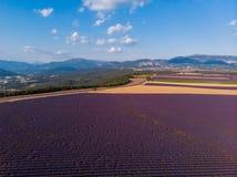 美丽的培养的淡紫色领域和山鸟瞰图  库存图片