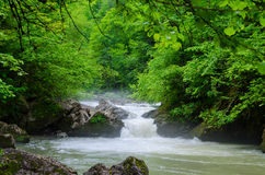 美丽的墙纸牛奶瀑布流程急流小河 高加索森林Isichenko瀑布的, Guamka, Mezmay落矶山脉河 免版税库存照片