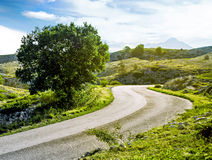 美丽的夏天山路 免版税库存图片