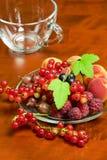 美丽的夏天莓果 库存图片