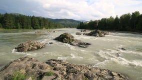 美丽的夏天风景山河 股票视频
