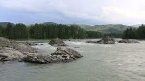美丽的夏天风景山河Katun。Timelapse View.Beautiful夏天风景山河Katun。 股票视频