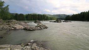 美丽的夏天风景山河Katun Timelapse视图 股票视频
