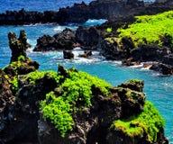 美丽的夏威夷 免版税图库摄影