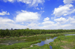 美丽的多云蓝天和一条河有绿色植被的 免版税库存图片