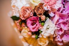 美丽的多彩多姿的另外花特写镜头 库存图片