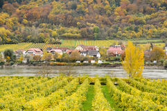 美丽的多瑙河银行在Durnstein镇,奥地利附近的秋天 库存照片