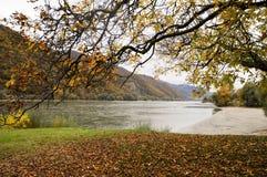 美丽的多瑙河银行在Durnstein镇,奥地利附近的秋天 免版税库存照片