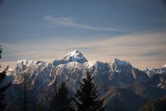 美丽的多雪的山全景  免版税库存图片